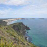 Wellington, Auckland und der hohe Norden- Neuseeland Tagebuch Teil 11