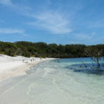 Fraser Island- unberührtes Naturparadies