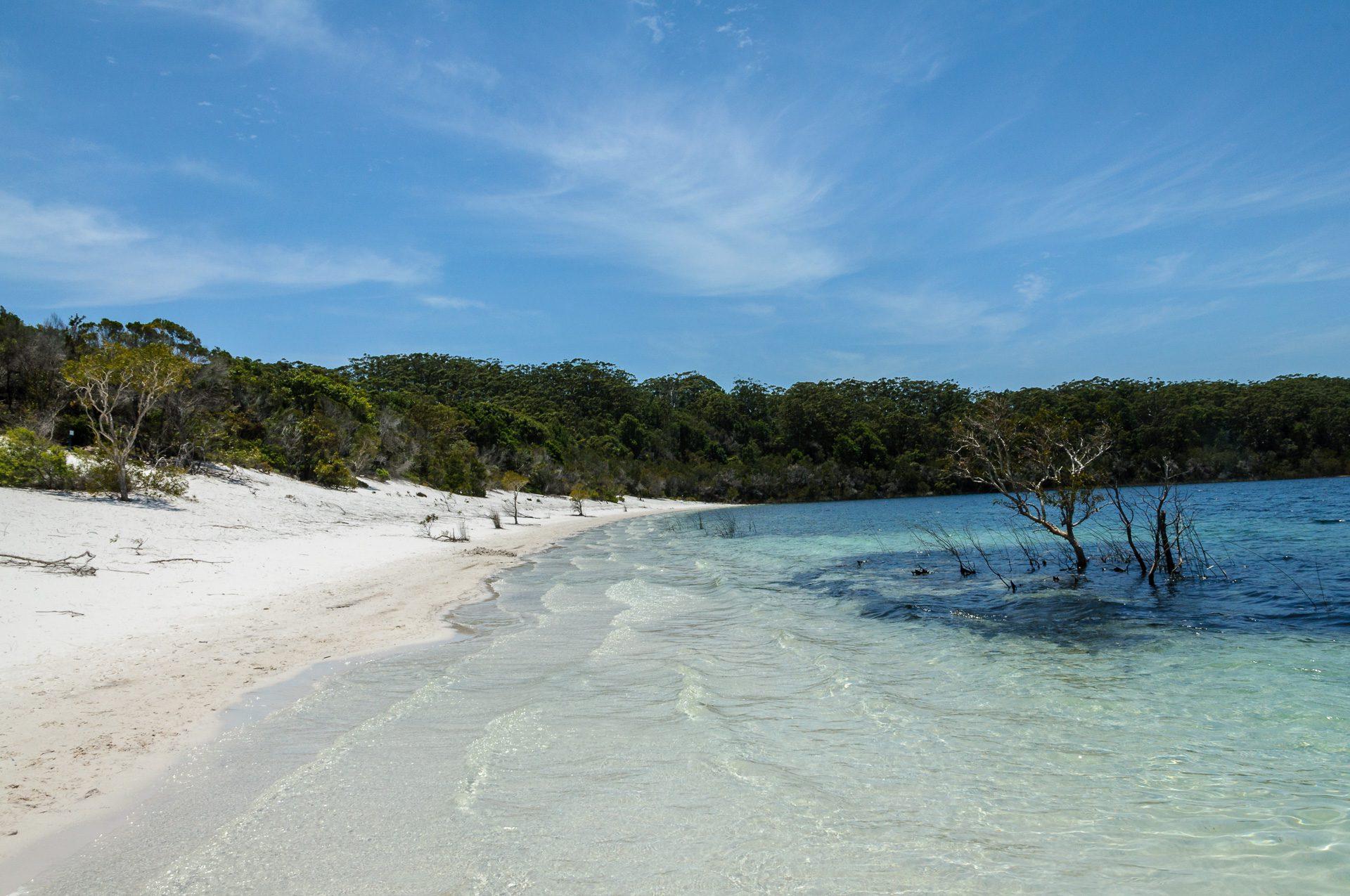 Fraser island Tour Titel