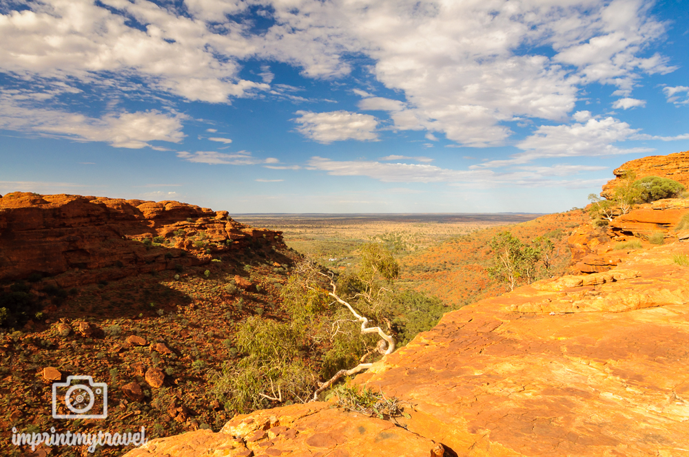 Outback Australien: King's Canyon