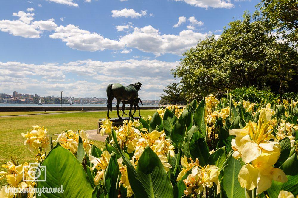 Highlights in Sydney: Botanischer Garten