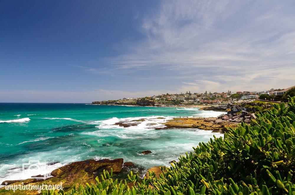 Highlights in Sydney: Bondi Coastal Walk
