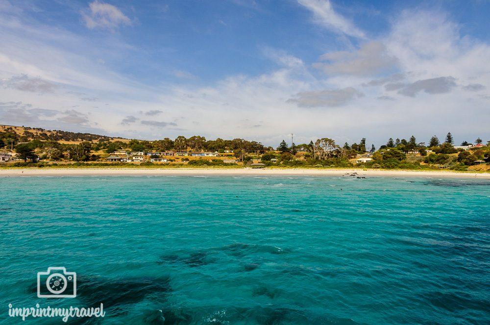 5 Gründe für Kangaroo Island