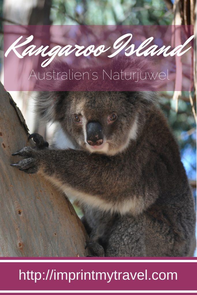 Australien Reise, Kangaroo Island. 5 Gründe dieses Naturparadies zu besuchen!