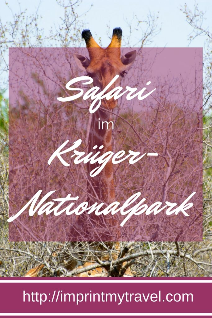 Safari in Südafrika, Besuch im Krüger Nationalpark