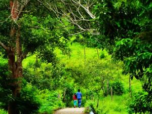 Das kleine Dorf Puerto Nariño
