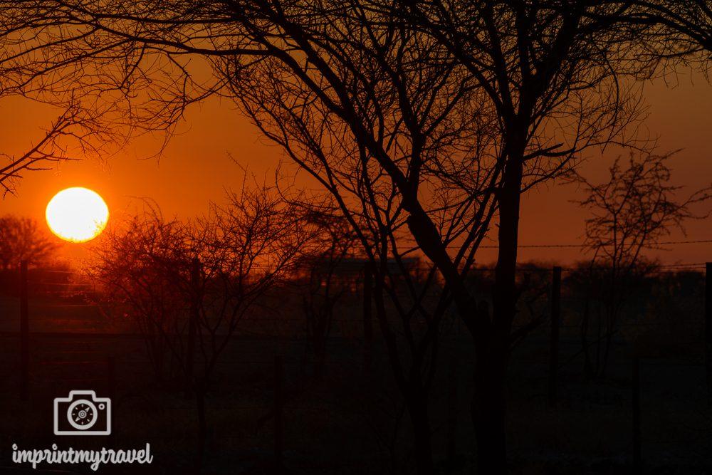 Sonnenaufgang im Etosha Nationalpark