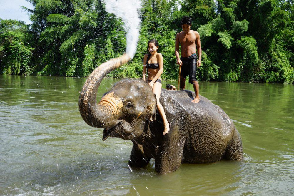 Tierschutz auf Reisen: Elefantenreiten