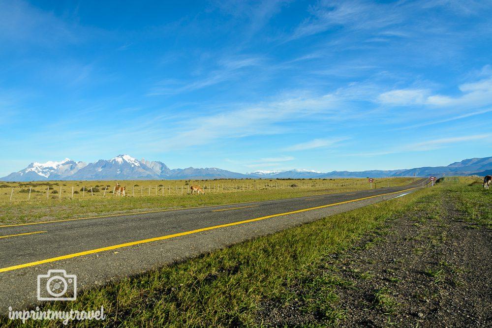 Patagonien Rundreise: Straßen in Patagonien
