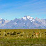 Packliste Patagonien – so reist du bestens vorbereitet ans Ende der Welt