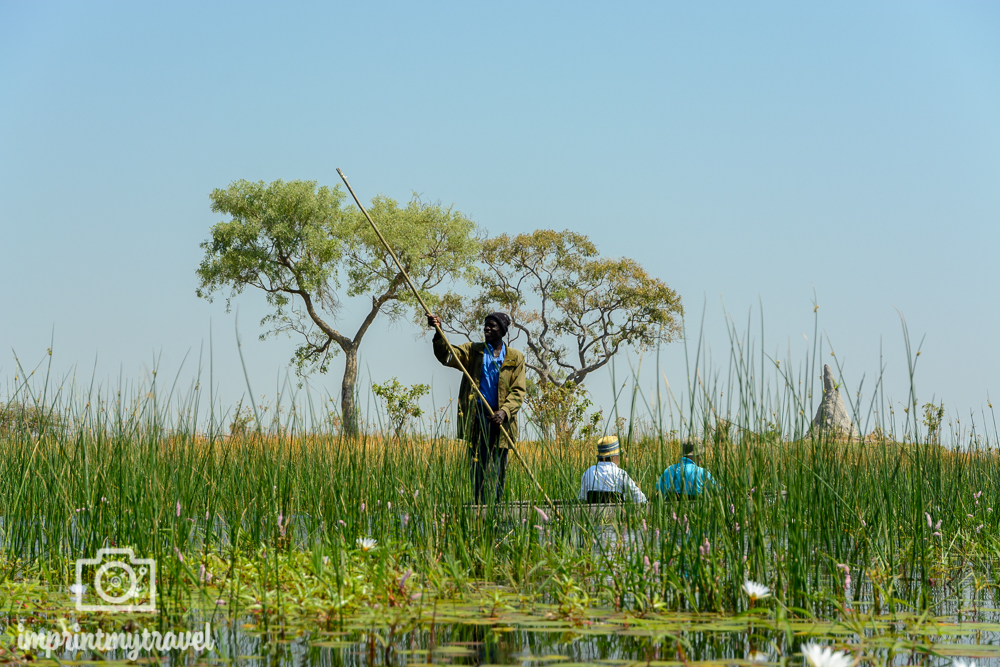 Okavango Delta Safari: Mokorofahrt