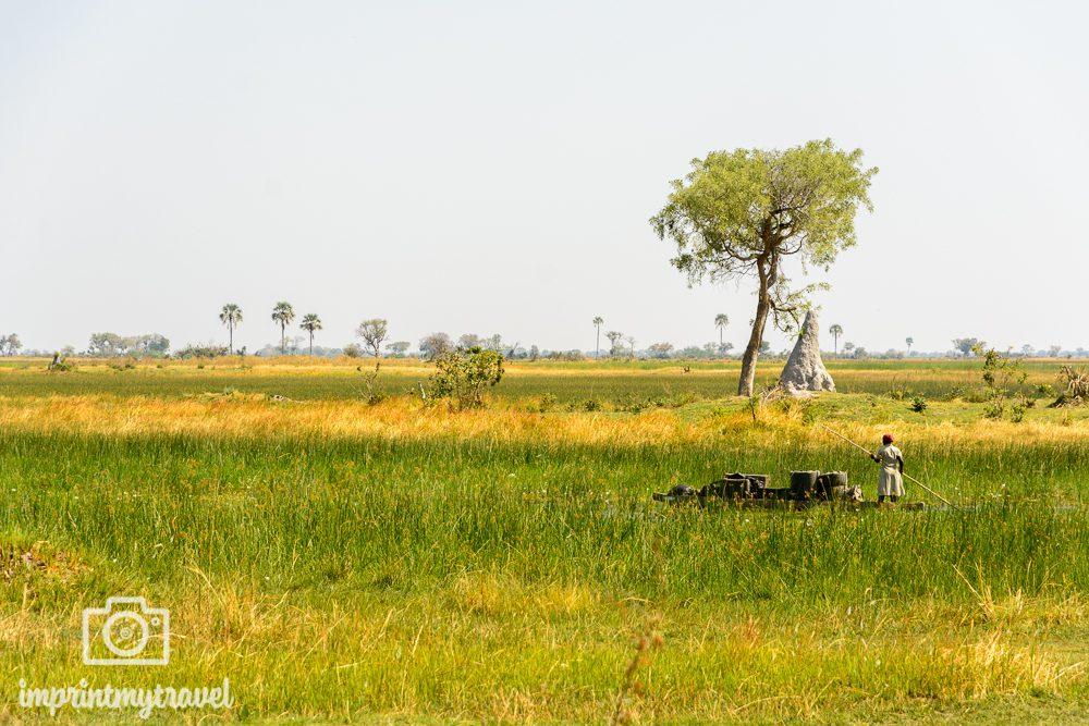 Okavango Delta Reise: Mokoro im Delta