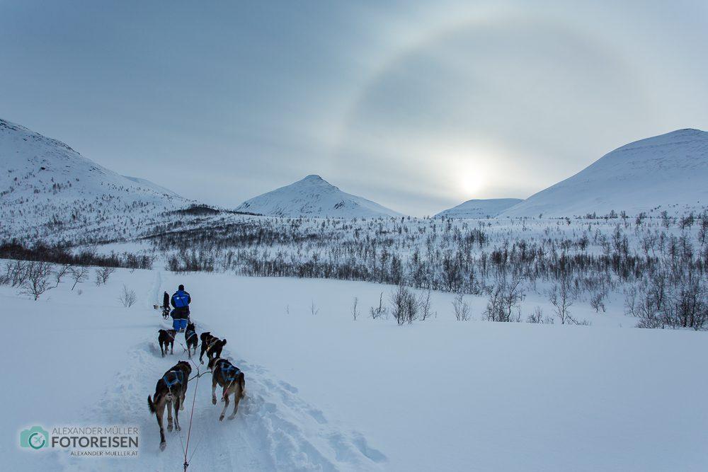 Fotoreise Nordlichter Norwegen Huskyschlitten
