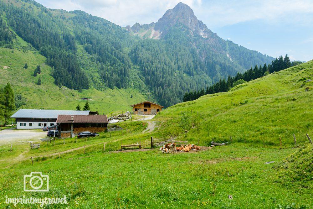 Wandern in den Kitzbüheler Alpen Labalm