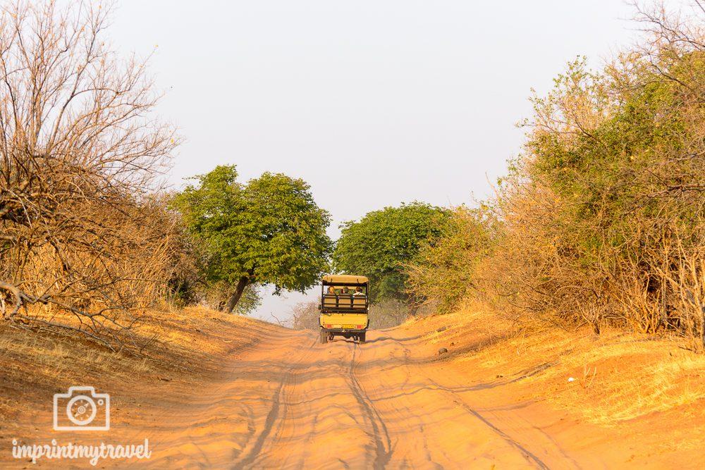 Safari im Chobe Nationalpark Allradfahrzeug