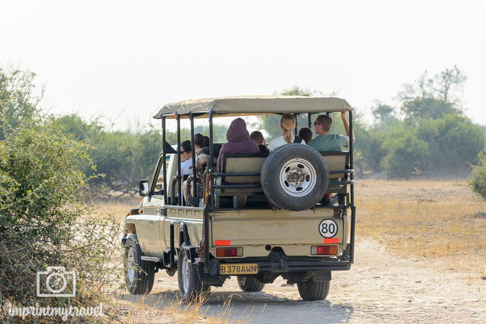 Safari im Chobe Nationalpark Game Drive Allradfahrzeug