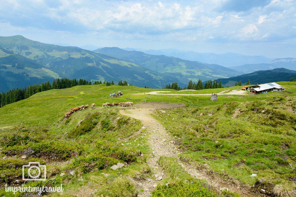 KAT Walk Tirol Lodronalm