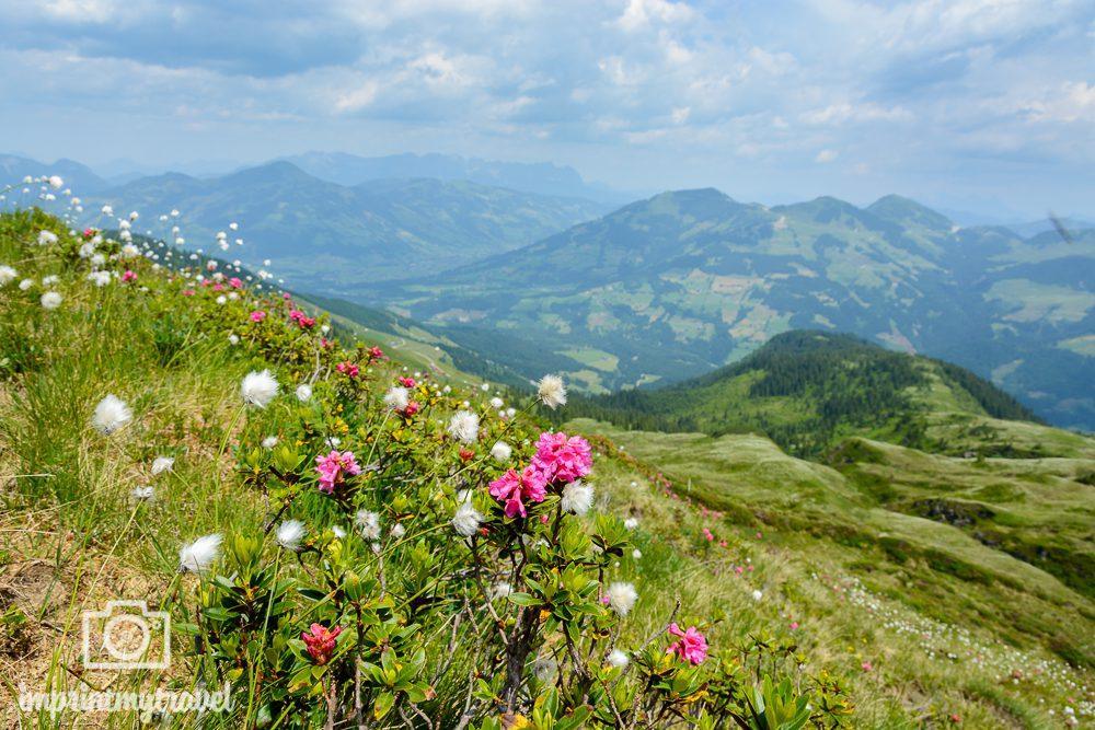 KAT Walk Tirol Wandern Lodron