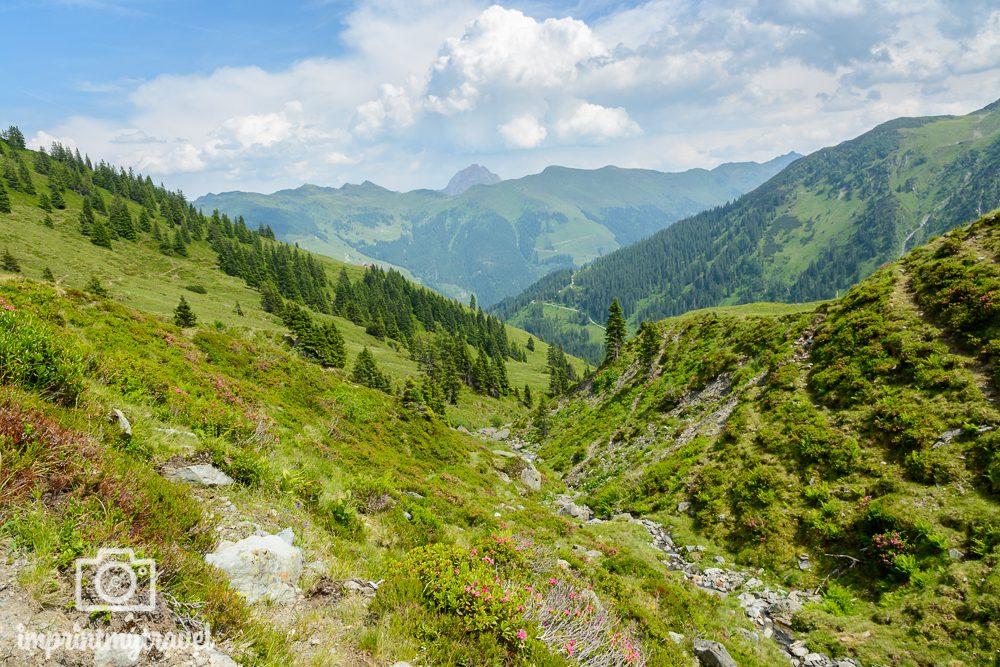 KAT Walk Tirol Wandern Almwiesen