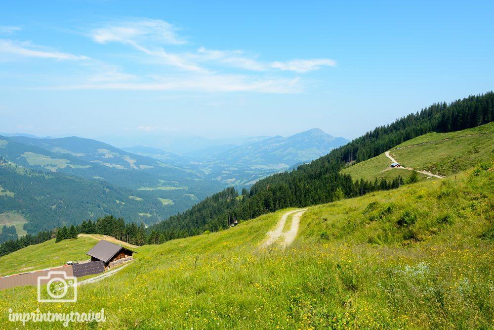 Wandern in den Kitzbüheler Alpen Scheibenschlag Hochalm
