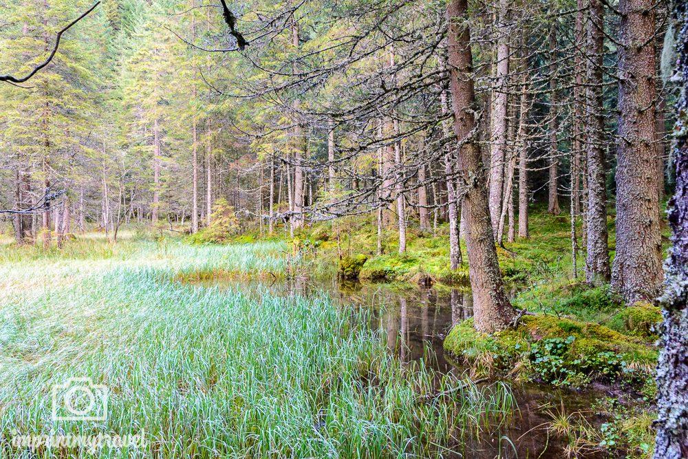Ferienregion Salzburger Lungau Biosphärenpark