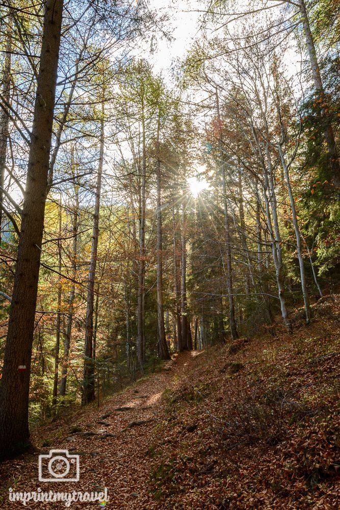 Wandern in Südtirol Herbst