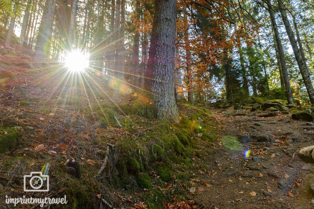 Wandern in Südtirol Panoramarundweg Herbst
