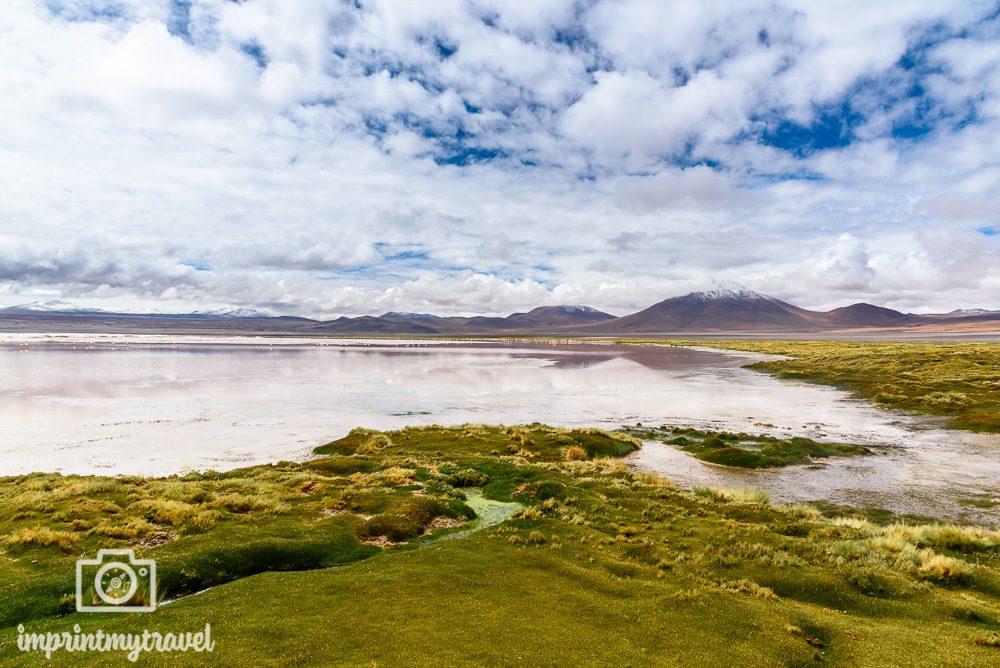 Bolivien Bilder Laguna Colorada