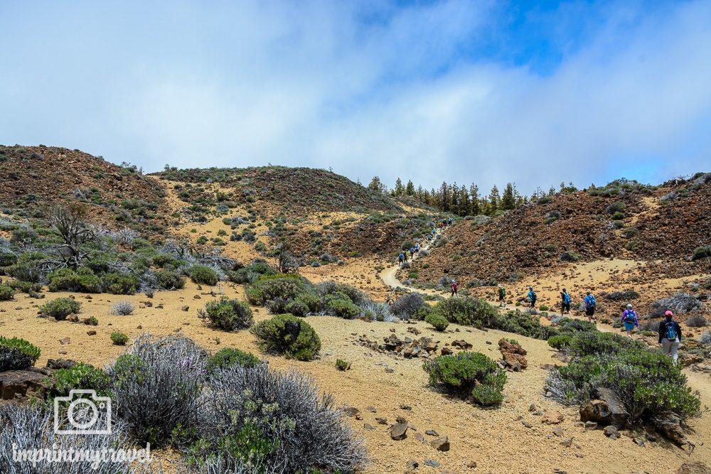 Wandern auf Teneriffa Teide Nationalpark