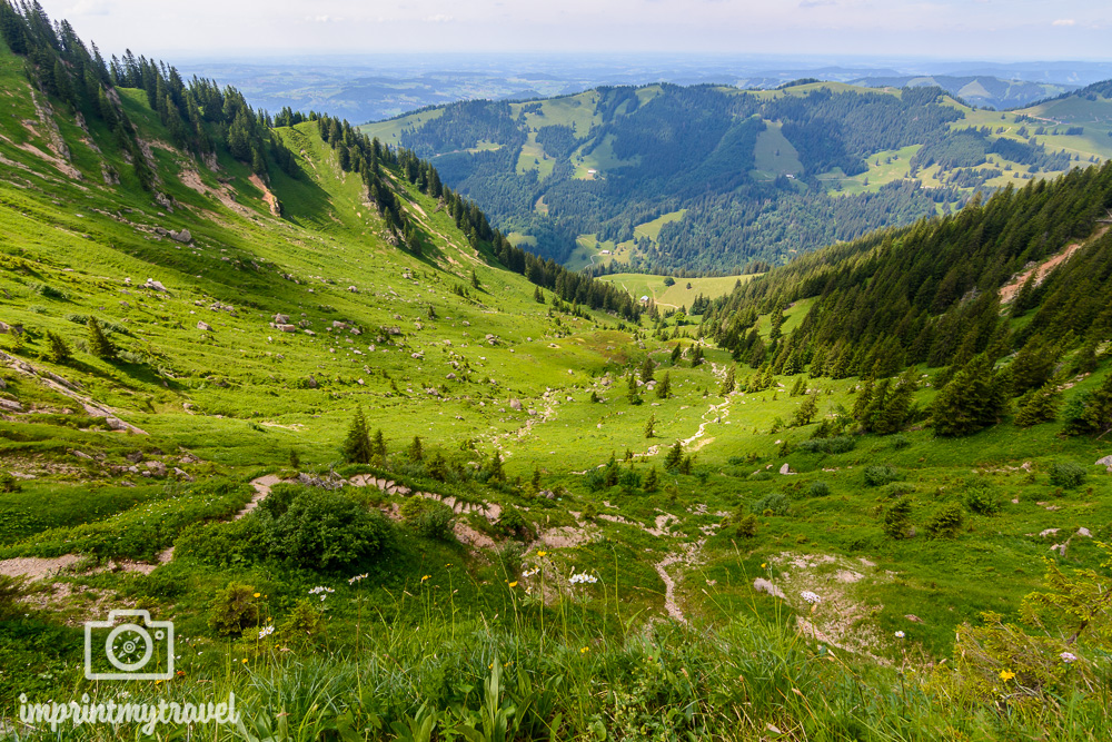 Urlaub im Allgäu Wandern Hochgrat