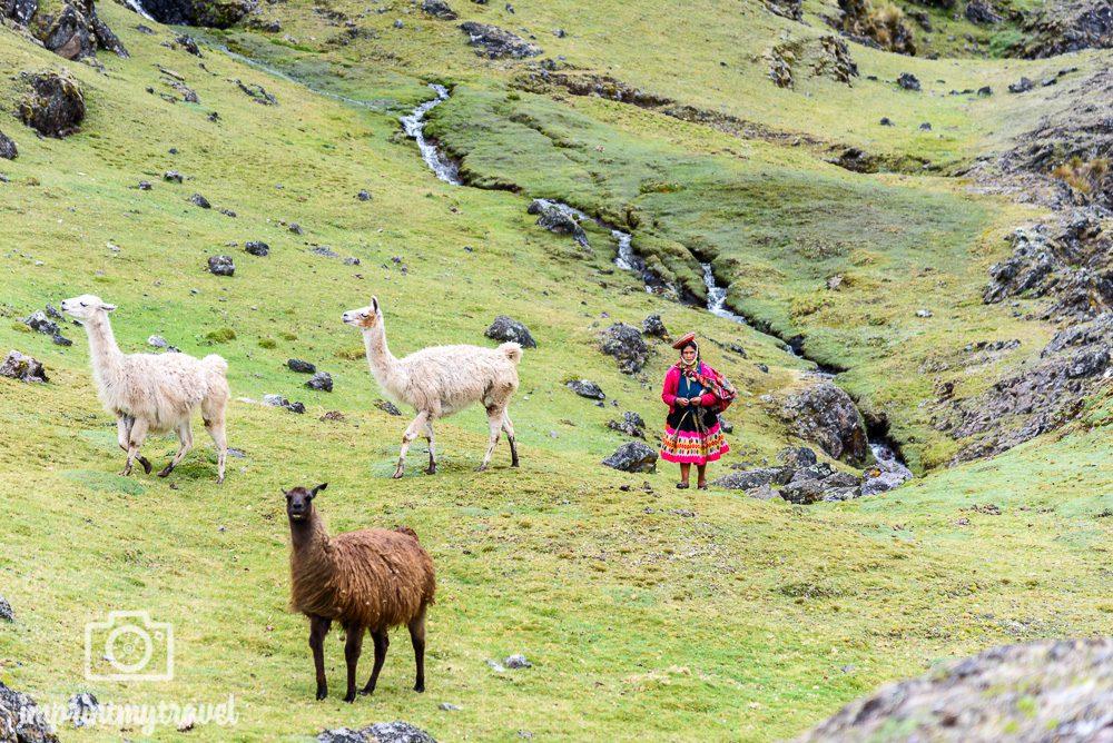 Lares Trekking nach Machu Picchu Begegnungen