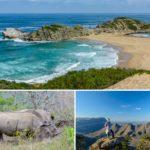 Meine Top-5 Reisehighlights in Südafrika