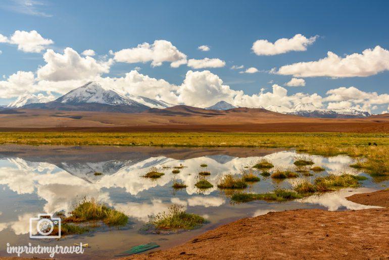 Atacama Sehenswuerdigkeiten Rio Putana