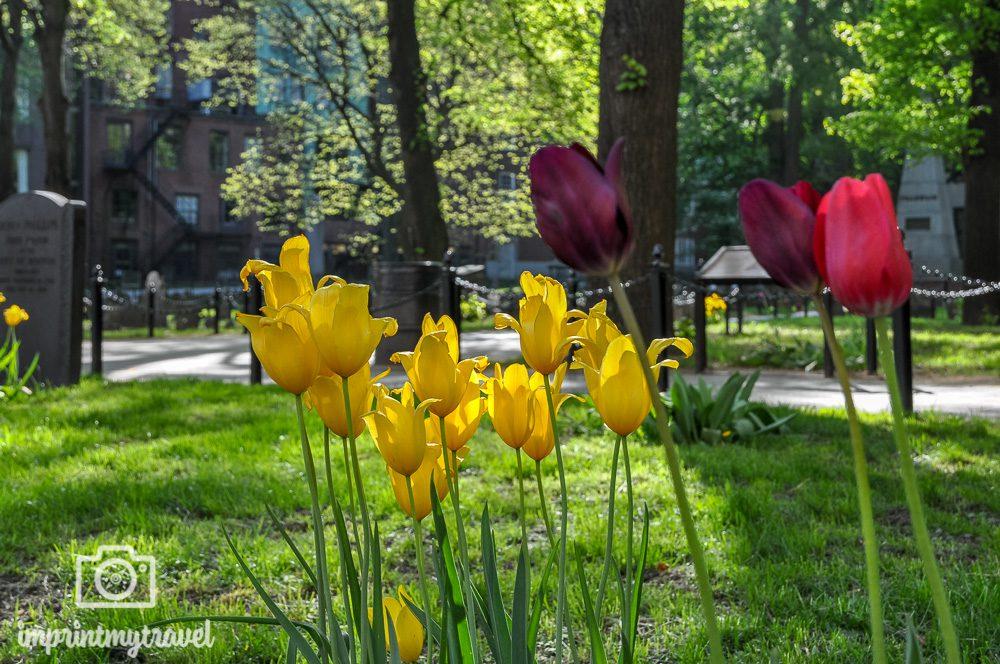 Reisezeit Boston Mai