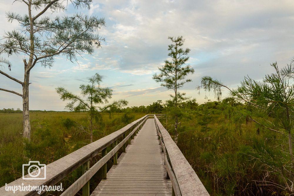 Pa-hay-okee Aussichtsplattform im Everglades Nationalpark
