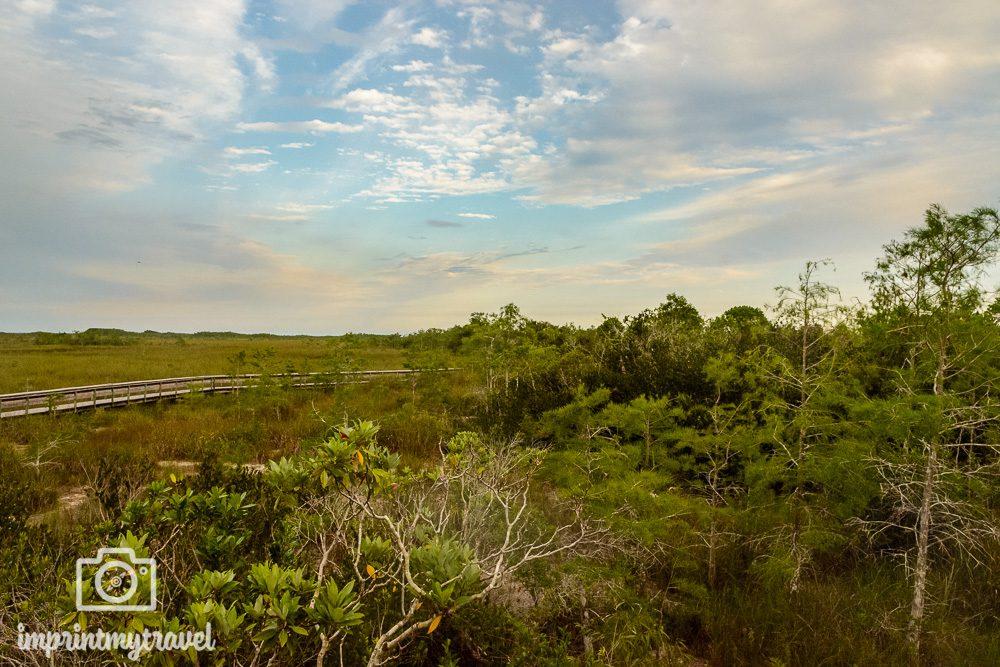 Pa-Hay-Okee Aussichtspunkt Everglades Nationalpark