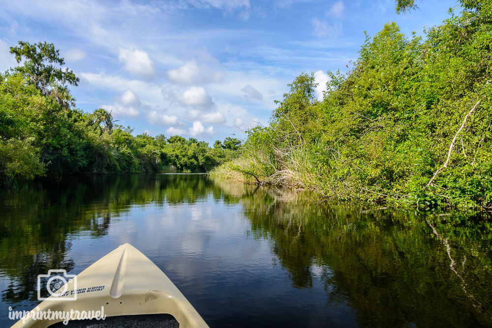 Big Cypress National Preserve Kayak Tour