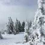 Aktivitäten in der Umgebung und in Serbien? Kopaonik und mehr