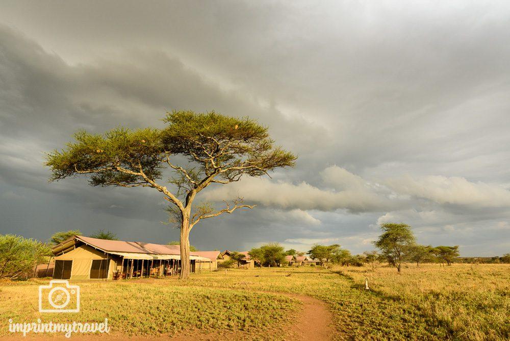 Fotoreise Tansania Zeltcamp Serengeti
