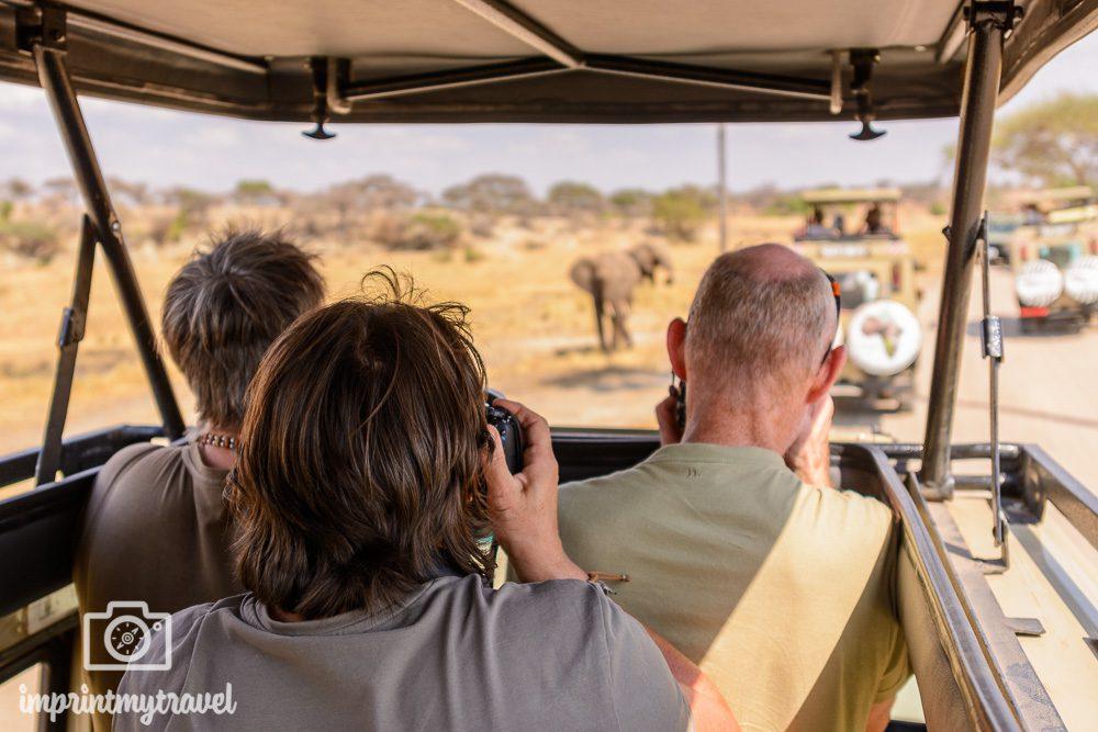 Fotoreise Tansania Tarangire Nationalpark