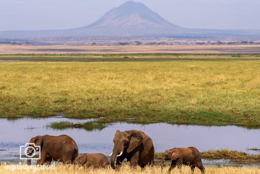 Tarangire Nationalpark Tansania Landschaft