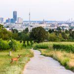 Ab ins Grüne! 12 schöne Ausflugstipps in Wien
