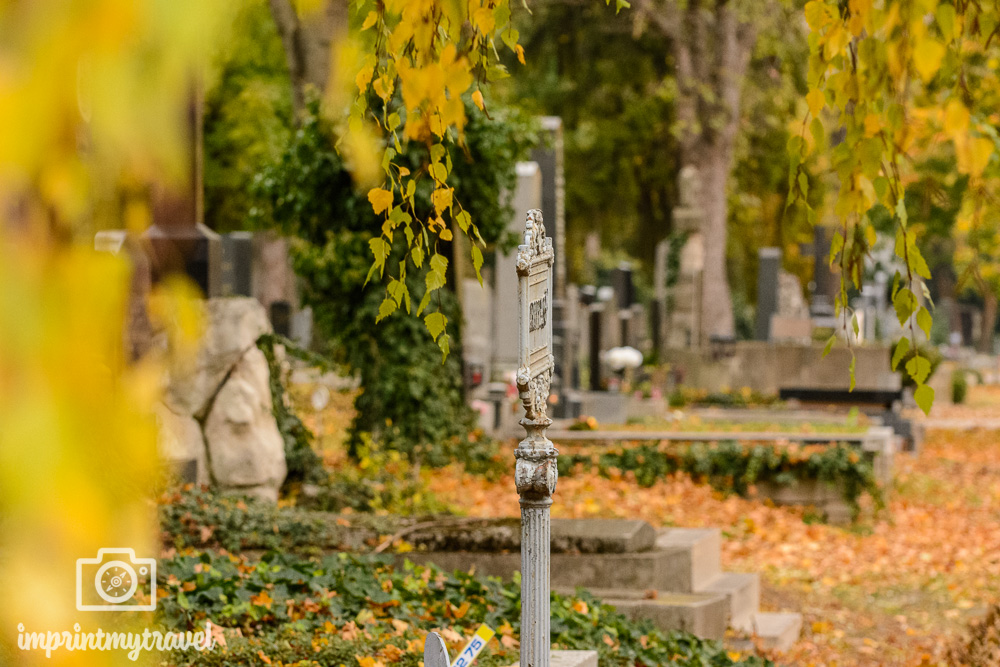 Ausflugstipps Wien Zentralfriedhof