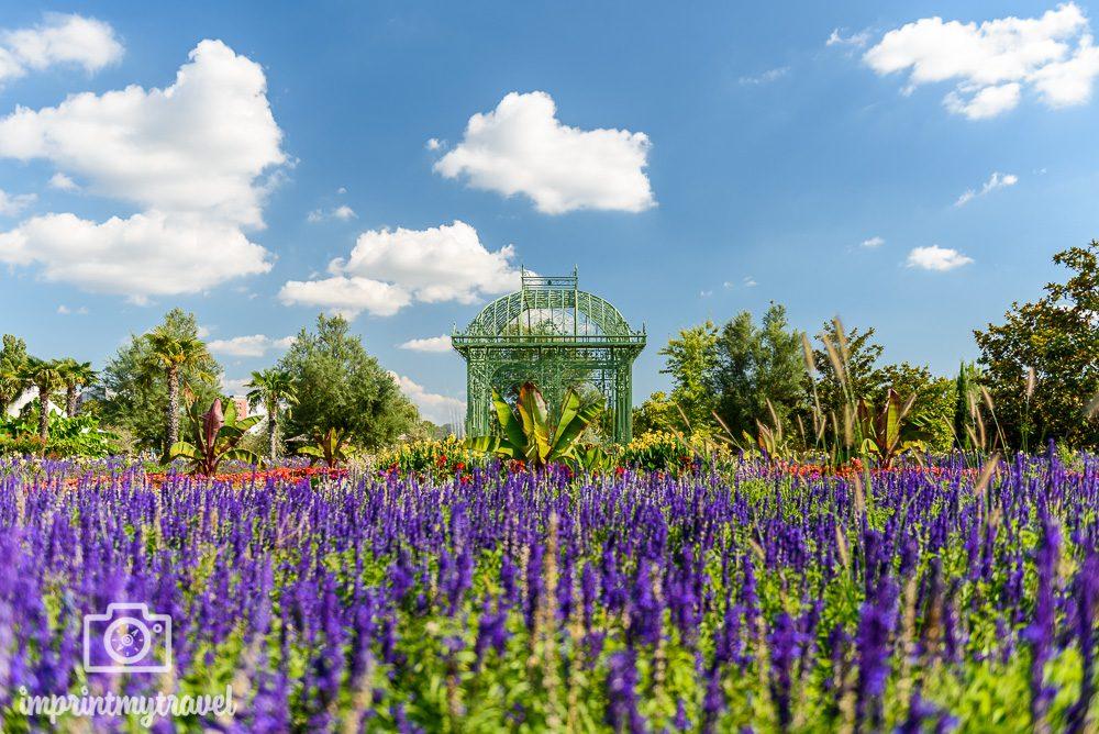 Ausflugstipps Wien Blumengärten Hirschstetten