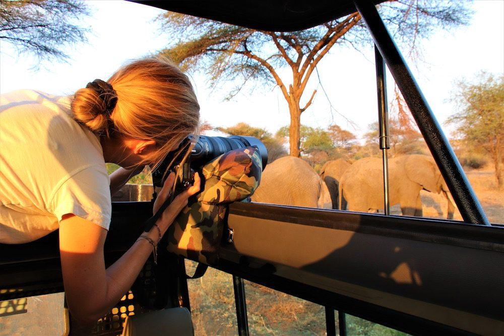 Tansania Safari Tipps Fotografie