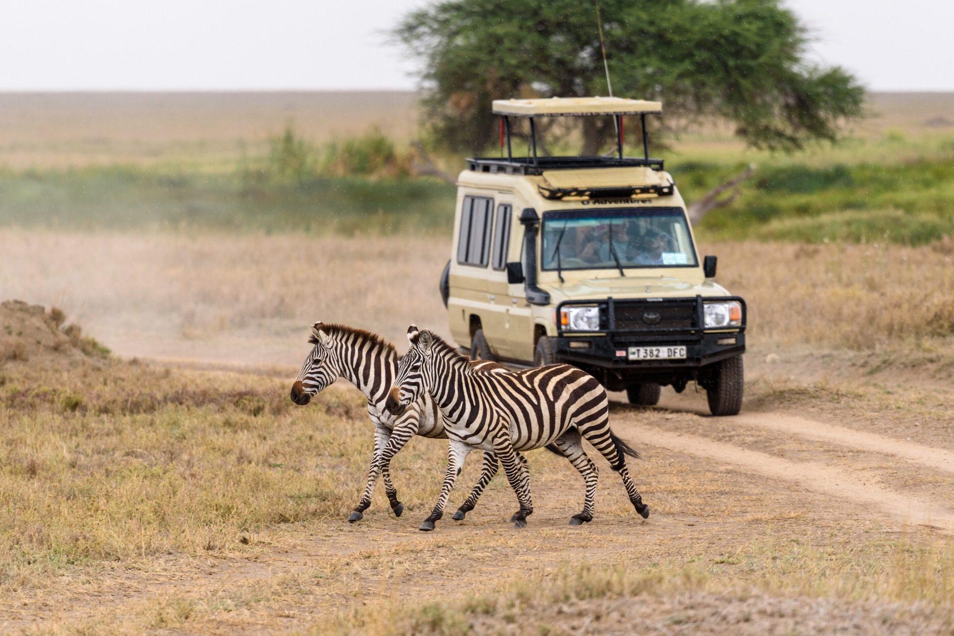 Afrika Reisen - cover