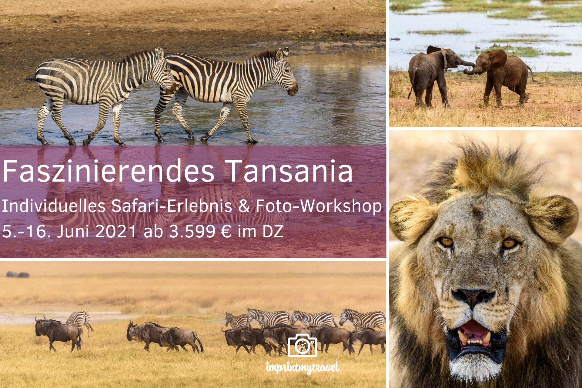 fotoreise tansania juni 2021