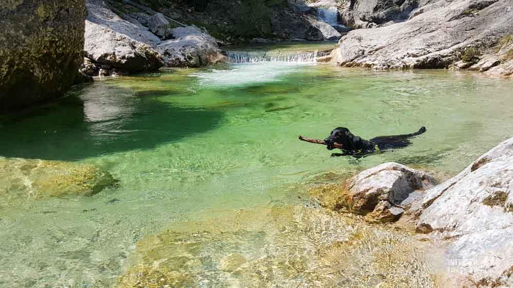 Ausflugsziel in Österreich Ötschergräben