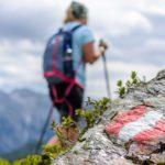 Urlaub in Österreich: 40 Reiseblogger verraten ihre Lieblingsplätze!