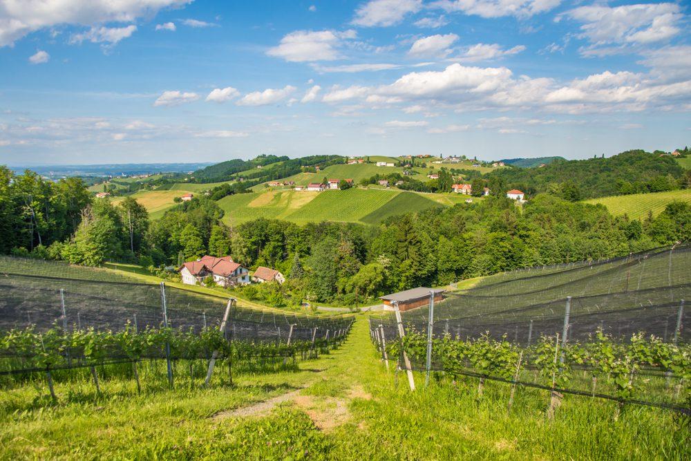 Urlaub in Österreich Südsteiermark